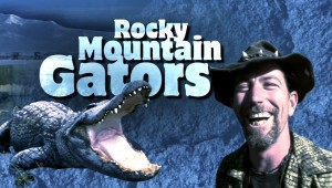 Rocky Mountain Gators!